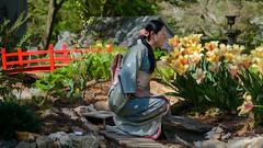 Kuniko in Garden (Mike L Washington) Tags: garden tulips kimono kanzashi
