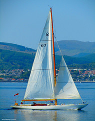 Scotland Gourock a classic 1958 river Clyde wooden racing yacht called Sceptre 5 June 2016 by Anne MacKay (Anne MacKay images of interest & wonder) Tags: classic june by river anne scotland clyde wooden yacht 5 picture racing 1958 mackay gourock sceptre 2016