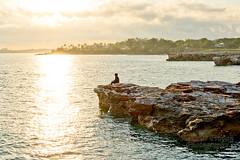 Pondering (stormgirl1960) Tags: cliff woman sun reflection beach water girl sunrise dawn sand rocks sitting australia darwin figure pondering northernterritory nightcliff