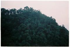 (tayn3) Tags: travel film analog 35mm asia southeastasia pentax k1000 ishootfilm 200iso vietnam jungle 200 fujifilm analogue karst indochina fujicolor 2016 superia200 filmphotography colorfilm hagiang northvietnam colourfilm dongvan croplab traveldeeper dongvanloop