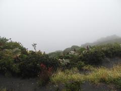 "Volcan Irazu: nada ! Tout est dans le brouillard ;) <a style=""margin-left:10px; font-size:0.8em;"" href=""http://www.flickr.com/photos/127723101@N04/26993463691/"" target=""_blank"">@flickr</a>"