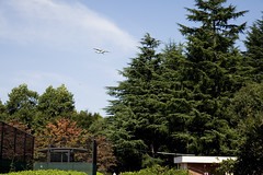 A SMALL AIRPORT, SOME PARKS AND CLOUDS - XXXV (Jussi Salmiakkinen (JUNJI SUDA)) Tags: park wood autumn sky cloud japan landscape tokyo cityscape     chofu    nogawa