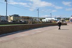 IMG_1969Site4 (janohighway) Tags: summer sculpture art design seaside community selection environment choice recycling collective debate teignmouth outdoorart ecoart sculpturetrail devonuk womenartists trail2016