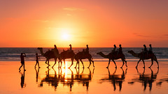 Say Cheese (Pat Charles) Tags: ocean sunset sea reflection beach water train reflections sand photographer ride group australia reflected riding camel wa camels westernaustralia broome cablebeach