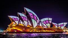 Vivid Sydney-26