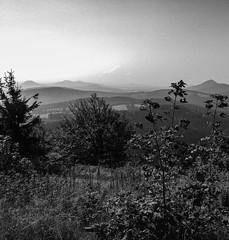 Lausche / Lu - 793 m (trekkpics) Tags: travel mountains berg czech urlaub berge czechmountains reise gebirge 2014 zittau zittauer gipfel hory lausche lausitzer luick lu