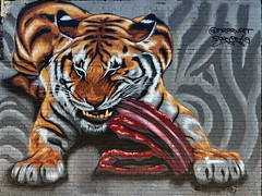 Astoria Street Tiger (Eddie C3) Tags: newyorkcity streetart astoriaqueens wallmurals wellingcourtmuralproject