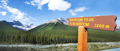 "PhotoFly Travel Club: Canadian Rockies 2011 • <a style=""font-size:0.8em;"" href=""http://www.flickr.com/photos/56154910@N05/6802989484/"" target=""_blank"">View on Flickr</a>"