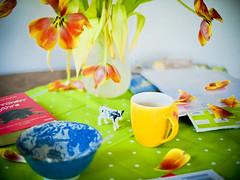 Frhstcksmilch von eigenen Khen (redstarpictures) Tags: flowers green cup tasse breakfast buch table book kuh cow tulips stilleben bowl grn blume tisch schssel frhstck tulpen welk stililife welkenfade