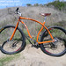 Muse Cycles Rhythm 29er Elwood Blufs
