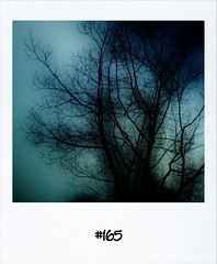 """#DailyPolaroid of 12-3-12 #165 • <a style=""""font-size:0.8em;"""" href=""""http://www.flickr.com/photos/47939785@N05/6839779336/"""" target=""""_blank"""">View on Flickr</a>"""