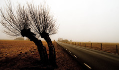 120317-Day 77/366 (Peter Hillhagen) Tags: fog vatten dimma fotosondag fs120318