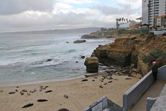 La Jolla - Children's Pool (Driven to Capture 2) Tags: beach pool coast sandiego lajolla childrens