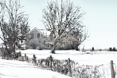 Abandoned Farmhouse (lynn.h.armstrong) Tags: camera morning trees windows winter light sky bw white snow ontario canada black color colour building art abandoned field farmhouse fence dark lens geotagged effects photography photo interesting vines mac aperture nikon long flickr shadows zoom south country images lynn h getty nikkor armstrong berwick stormont vr licence afs request topaz dx sault attribution ingleside 2011 ifed 18200mm f3556 noderivs vrii d7000 lynnharmstrong