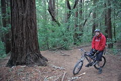 At the Start (vividcorvid) Tags: california park santacruz plant abstract color tree green sports bicycle forest outside leaf jump woods branch grove outdoor unitedstatesofamerica places bark transportation trunk redwood wilderness root mountainbiking ucsc