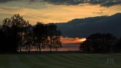 Sundown (123/365) (Jchales.co.uk) Tags: trees sunset orange sun green grass silhouette clouds project golf day sundown cut 123 days course 365 essex chelmsford efs1855mmf3556isii