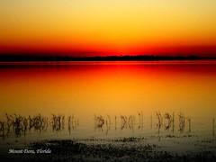 Sunset , Mount Dora (tinica50) Tags: usa fl mountdora lakedora natureplus saariysqualitypictures mygearandme mygearandmepremium mygearandmebronze mygearandmesilver mygearandmegold blinkagain