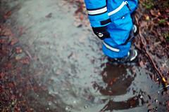 051:366 (Conny Lundgren) Tags: leica water puddle 50mm skåne flickr sweden schweden porta sverige malmö vatten suécia malmo suecia select scania øresund m9 suède öresund svezia 366 ruotsi pöl isveç summicron50 11819 швеция leicasummicronm50mm project366 projekt366 366february leicam9 50mmf2summicronm 366x2012