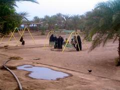 Yemen, Al Hudaydah, Red Sea Coast, Women in Niqab (MY2200) Tags: old red sea mountains al kat gulf islam arabic east yemen arabian sanaa middle ibb oldcity islamic taiz saleh khat yemeni hudaydah alhudaydah arabianpeninsula aliabdullahsaleh republicofyemen alyaman khatchew khatchewing