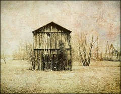 Lone Structure (MEaves) Tags: barn kentucky structure weathered toned textured antiquity ruralamerica k10d pentaxk10d pentaxart