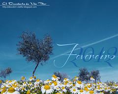 Flores de Fevereiro / February flowers (Transmontano) Tags: tree portugal photoshop arvores bragana braganca vilaflor idream xoox transmontano ilustrarportugal artofimages addvf portugalmagico