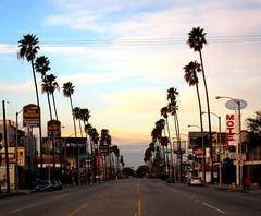 Early Morning in Pasadena (jleathers) Tags: california sky america sunrise palms boulevard motel palmtrees socal pasadena bestwestern southerncalifornia avenue coloradoboulevard