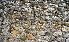 This Wall Rocks! (ziggywiggy1(SHELLIE B.)) Tags: photographicart washingtonheights damncool flickritis thedumps allwelcome freephotos elpasojoesplace flickrelite mykindofpicturegallery yourvisions clikkando goldenphoto picnikers thehugegroup asbeautifulasyouwant fotopasionphotopassion