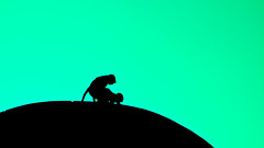 Monkey Style? (Morten Falch Sortland) Tags: india green contrast monkey monkeys gujarat pavagadh champaner photomortenfalchsortland