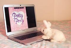 Pretty Pony zine  (Natlia Viana) Tags: zine rabbit love illustration comics photography sweet ilustrao fanzine prettypony natliaviana cuteillustration sweetmagazine