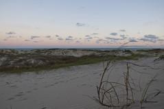 Dunas al atardecer (Willysancarlos) Tags: paisajes playa paisaje cielo atardeceres oceano barradelchuy atarder