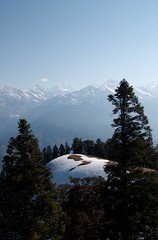 Golf course?? (pradeep_kumbhashi) Tags: camping snow mountains nature trekking landscape landscapes paradise glaciers environment serene kashmir himalaya outofthisworld indiatravel greenary findyourself himalayantrekking sankri warwan natureslap kedarkanthapeak warwanvalley