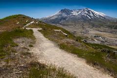 Mount St Helens Trail (thunderheart2013) Tags: usa volcano washington nationalpark nikon glacier np glaciernationalpark mountsthelens sthelens mountaingoa
