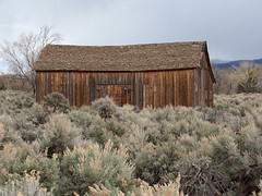 Old Barn, Carson City Nevada (bindare2) Tags: old city abandoned barn carson nevada brush sage