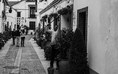 Regadio de altura (Nebelkuss) Tags: street blackandwhite flower blancoynegro flor cordoba instant moment momentos patios humanzoo instantes callejeras juderia elzoohumano fujixpro1 ladrondemomentos fujinonxf35f14 instantsthieve