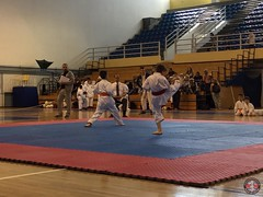 stefanou_15_5_2016_knockdown_168