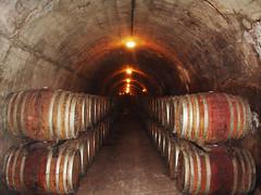 Im Weinkeller (VenusTraum) Tags: licht wein weinkeller fsser rotwein gewlbe