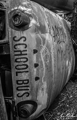 School Is Out (Tom McAdam) Tags: travel school bus abandoned decay kentucky grunge debris indiana forgotten junkyard desolate lostplaces