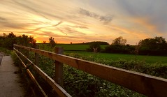 Sunset (madmax557) Tags: wood uk trees sunset sky fence landscape a14nearhuntingdon