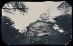 Witch's House (batuda) Tags: pinhole obscura stenope paper film orthochromatic 6x9 photocopyfilm analogue d76 wide wideangle depthoffield architecture building wooden old countryside inknai tauragnai utena lithuania grass trees motion movement witch house sky bw blackandwhite monochrome mediumformat rounded landscape inexplore