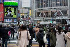 Shibuya Crossing (Michael.Nutt1) Tags: road people coffee japan tokyo cafe nikon mess chaos crossing shibuya culture pedestrian starbucks d7100