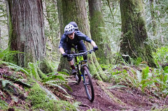 Norco Bicycles Shoot-2466 (mariskar) Tags: cycling bikes mtb mountainbiking victoriabc mountainbikes yyj bearmountainresort haleysmith explorebc norcobicycles thecyclingco norcooptic