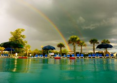 Swimming Under a Rainbow (TrackHead Studios) Tags: storm pool clouds rainbow swimmingpool palmtrees palmtree adamhall stormclouds trackhead trackheadstudios trackheadxxx