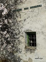 Casera Los Frailes (manolovega) Tags: ruinas fujifilm crdoba cortijo lucena almendro abandonado subbetica subbticas manolovega subbticascordobesas palojo fujix20 caadadepalojo caseralosfrailes