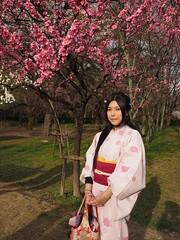 Enjoying the Cherryblossoms (M_Strasser) Tags: japan kyoto olympus cherryblossom sakura kimono kirschblten olympusomdem1