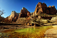 the three patriarchs and river in zion resized (houstonryan) Tags: life park art home water make river print landscape photography three utah blood photographer desert ryan houston cliffs national photograph bloom environment zion decor habitat freelance based photostitch riparian patriarchs lifeblood houstonryan