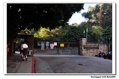 The gate Photo
