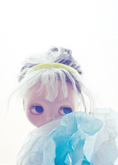 Aqua Poppy