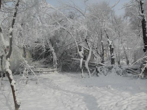 Последствия снегопада в Курган-тюбе (17)