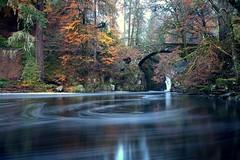 you were a run around....... (tom fincher) Tags: river perthshire falls bigtree hermitage dunkeld birnam ossian tummel riverbrann