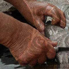 P1120324 (Claudie K) Tags: fontaine parrain opinel truites caillage hautmougey claudiek